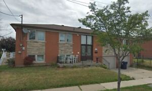 For rent: Weston Rd & 401. Bright roomy 1 bed.,apartment.