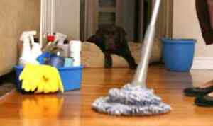 House cleaning $25/hr Fort saskatchewan and area Strathcona County Edmonton Area image 1