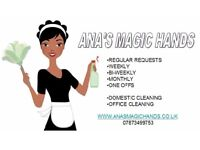 Excellent Friendly & reliable cleaners in your area!!