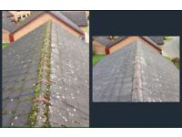 Roof cleaning and moss removal