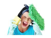 DOMESTIC AND COMMERCIAL CLEANING SERVICES - AFFORDABLE PRICES !!!