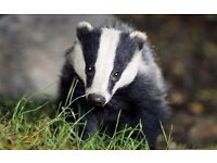 Help Protect Our Wildlife - Venue Fundraising - Flexible hours to suit - £8 - £15ph
