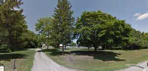 Hobby Farm For Rent 3 Acres Updated Raised Ranch in Byron