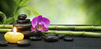 Energy Medicine and Healing Massage Available