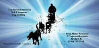 guide pour promenade  de chien de traineaux