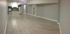 New Basement suite