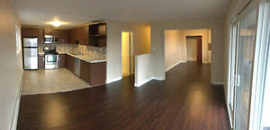 BACHELOR Apartment for Rent London Ontario image 1