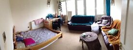 Spacious Room needs to be filled ASAP
