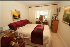 Ensuit Room in Shared House