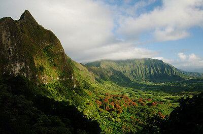Aloha Hawaii Treasures