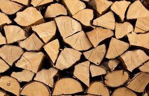 1.5 cord of mix wood