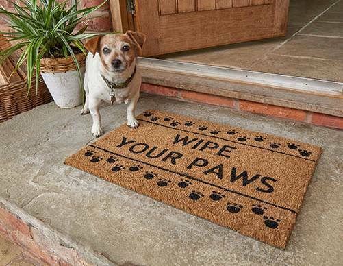 Wipe Your Paws Mat ☆☆BRAND NEW☆☆