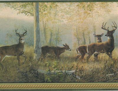 Forest Wallpaper Border (Northwoods Forest Deer with Green Edge Wallpaper Border TLL44341 )