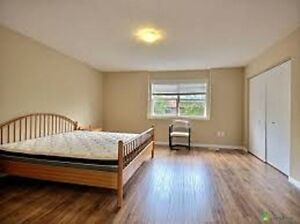8 years old 3 spacious bedrooms town hose near bus trminal Kitchener / Waterloo Kitchener Area image 5