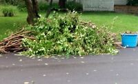 YARD WASTE REMOVAL ( Retired Guy)