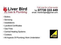 Liverbird Gas & Plumbing Services