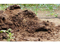 MANURE. FRESH OR WELL ROTTED.