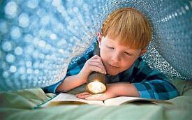 Literacy/ reading/ spelling/ English tuition for primary and secondary aged children and adults