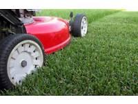 garden maintenance services