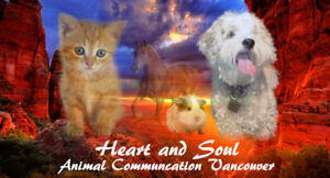 Pet Psychic Vancouver - Live, Deceased or Lost Pets
