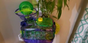 2 Robo Hamsters with cage and accessories