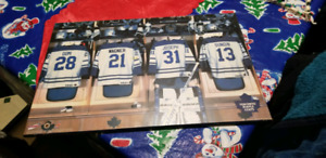 Toronto Malpe Leafs picture