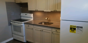 Non-Smoking 2 Bedroom Apartment Available Nov or Dec 1st