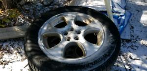 215 60 16 winter tires