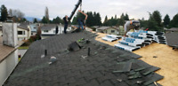 Roof repair and restoration services