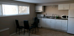 Basment  apartment  for rent