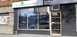Commercial Office or Retail Store for Rent