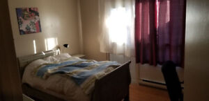 Roommate sought for big  apt in Ste. Anne's near McDonald Campus
