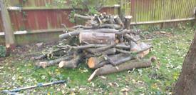 FREE apple & pear tree logs