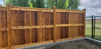 Camco Fencing and Lawns