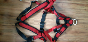 Fall harness with 6' lanyard and 50' rope and rope grab.