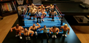 Figurines wwf hasbro avec ring