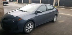 $2,000 CASH INCENTIVE Toyota Corolla LE w/ Upgrade Package