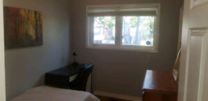 Bright Clean Room Available Now.  Near MUN and HSC