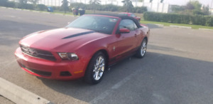 2010 mustang convertible clean in and out