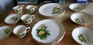 Antique  Royal Darwood Georgian china Moss Rose 22k Gold dishes