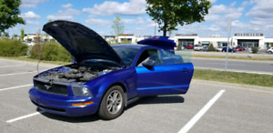 Mustang v6, Leather, manual