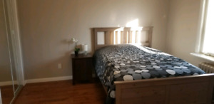 Fully Furnished Rooms at Sheppard West Station