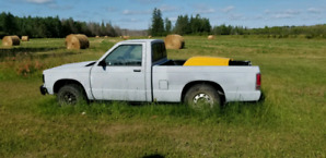 For Sale Or Trade 1988 S-10 Roller