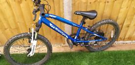 Muddyfox bike