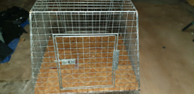 Dog Cage Solid