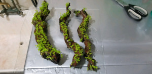 3pcs of driftwood with plants growing on it