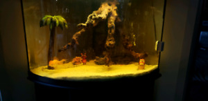 Fish Tank with 2 large filters..