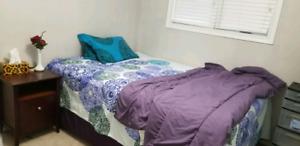 Room for Rent in Regina NW