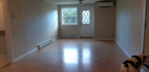 1 bedroom apartment for rent in Sambro!!