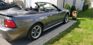 MUSTANG GT 2004 40TH ANNIVERSAIRE